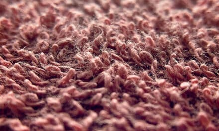 Advice for Choosing a carpet